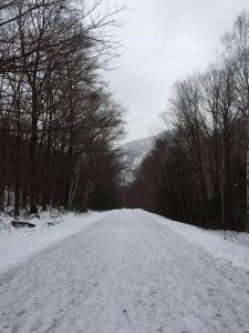 Snowy road hike