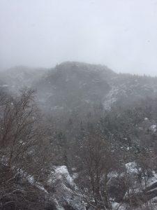 Views hike